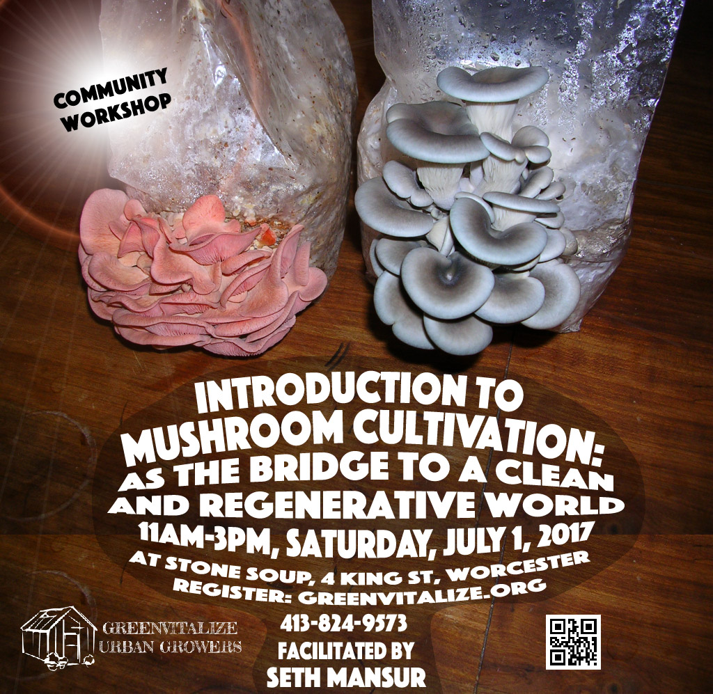 Mushroom Workshop - Greenvitalize Urban Growers